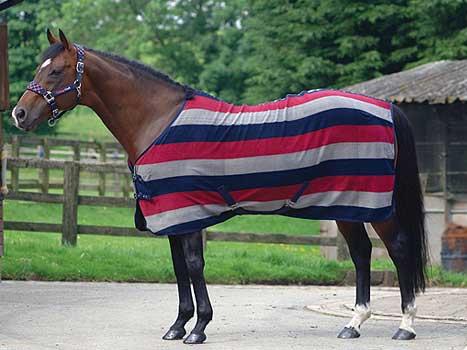 Masta Ascot Stripe Suede Fleece Rug The Tack Shack