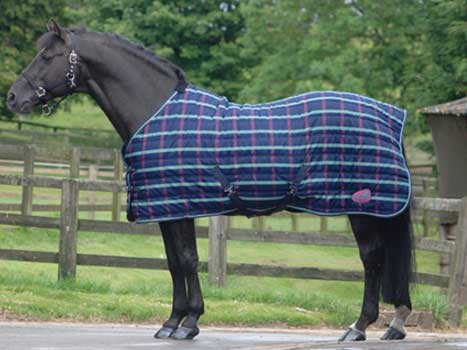 Masta Quiltmasta Light Weight Stable Rug The Tack Shack