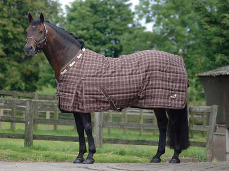Stable Rugs For Horses Stable Rug Extended Neck