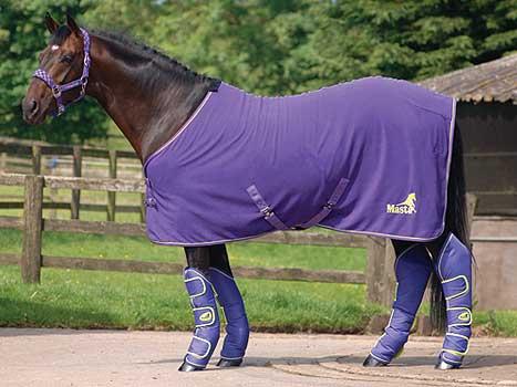 Purple Horse Rug Home Decor